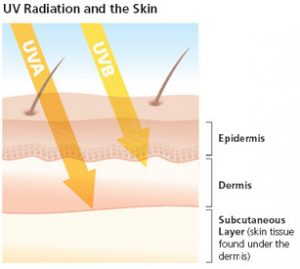 razele solare UVA și UVB, efectul asupra epidermei