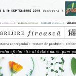 Lansarea site-ului De la Irina la Plai