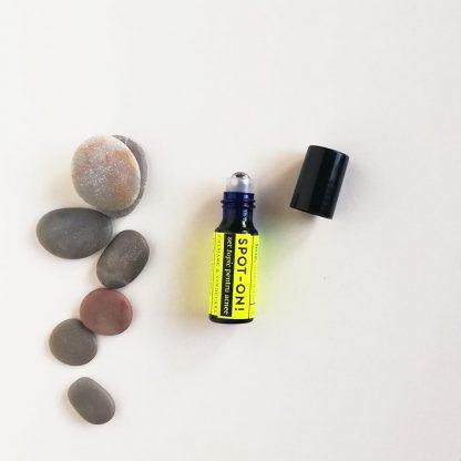 Ser pentru calmarea și vindecarea acneei